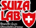 logo-SL100